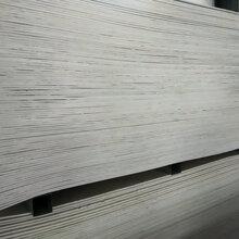 鋼結構隔斷防火板_國標玻鎂防火板河北供貨廠家圖片
