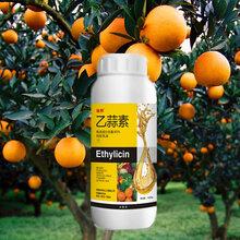 供应乙蒜素杀菌剂果树真菌细菌病害青苔净原厂原证杀菌剂