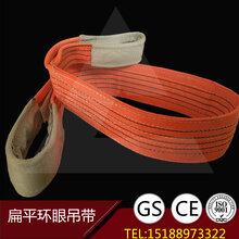 河北辰力廠家直銷辰力吊裝帶滬工吊裝帶五洲吊裝帶邦強吊裝帶1T-50T可定做圖片