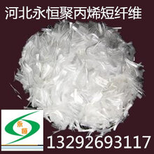 聚丙烯短纤维/抗裂纤维厂家直销