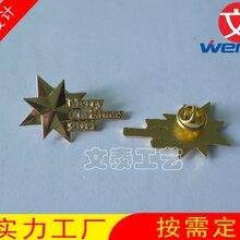 镀金司徽,上海司徽定制,锌合金徽章,找徽章工厂,高档司徽图片