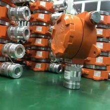 FT01固定式可燃气体探测器图片