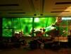 潍坊led显示屏/晶大光电