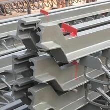 陜西西安伸縮縫價格-F80伸縮縫廠家質量可靠圖片