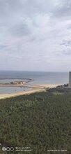 2019龙口海景房价格如何,金沙滩一下海景养生城图片