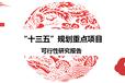 竹藤项目可行性研究报告风险评估报告