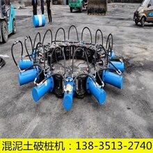 破樁機挖掘機圓形打樁機