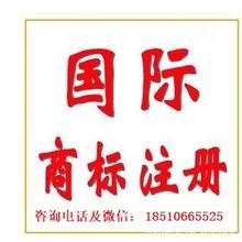 馬德里商標注冊,德國,美國,意大利,越南等國際商標注冊圖片