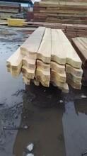 印尼菠萝格木材,印尼菠萝格板材,印尼菠萝格批发,图片