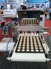 奎宏供應曲奇蛋糕生產線圖片