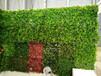 哪里定做仿真植物墻北京仿真綠植墻定做免費施工