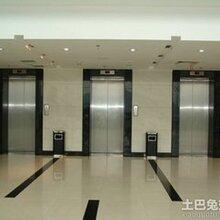 上海南汇电梯自动扶梯回收图片