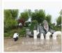 河南洛阳耐候型彩色排水管批发商口径630的平口管45度弯头225度弯头