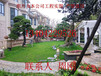 苏州高档别墅庭院设计、豪宅别墅景观设计、高端庭院景观绿化工程