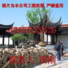 苏州园林绿化、别墅私家园林绿化设计、苏州庭院绿化景观工程图片