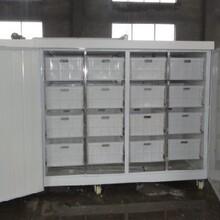 四川豆芽机加盟培训芽苗菜黄豆芽生长机