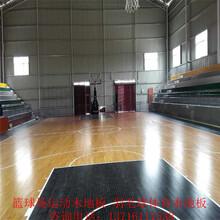 体育运动木地板价格室内篮球场馆健身房专用体育实木地板厂家图片