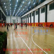 室内篮球场体育实木运动地板厂家价格图片