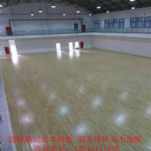 室内枫桦木体育木地板运动木地板_实木运动地板厂家安装图片