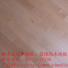 石家庄枫木实木体育地板厂家室内篮球体育木地板价格图片