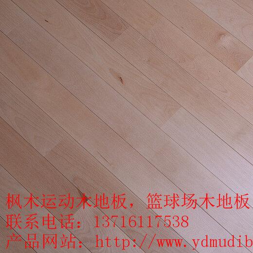 单层枫桦木66