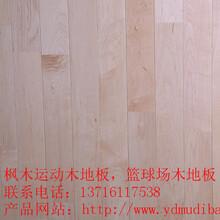 运动木地板实木运动地板_体育木地板_运动木地板价格图片