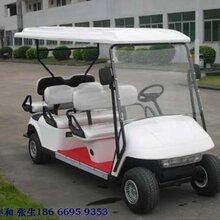 大丰和高尔夫球车整车和配件厂家直销