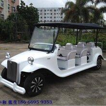提供大丰和电动老爷车DFH-LX8A
