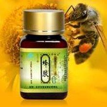 蜂胶进口清关/报关/巴西蜂胶进口关税/蜂胶如何进口