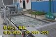 鱼虾清洗机(洗鱼、洗虾、海产品清洗流水线)