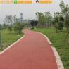供应哈尔滨彩色混凝土透水地坪粘结剂