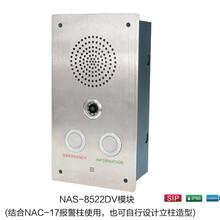 世邦NAS-8522DV/8522EV型IP网络可视对讲模块(平安城市/景区专用)图片