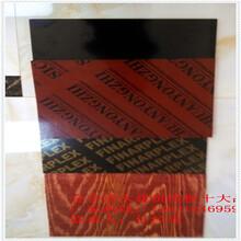 厂家供应混凝土覆膜板全酚胶胶合板水煮72小时不开胶图片
