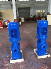上海创新立式高层建筑多级泵增压泵图片
