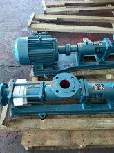上海创新G型单螺杆泵/浓浆杂质泵图片