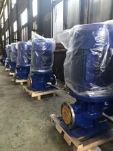 立式單級管道泵系列ISG型立式循環泵單級單吸離心泵圖片