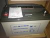 隴南理士UPS電源12V100AH現貨銷售DJM12-100價格