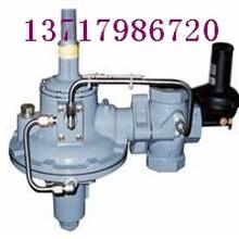进口(天然气,煤气)减压阀-VTON品牌