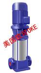 进口立式多级管道离心泵,进口卧式离心泵、进口立式离心泵图片