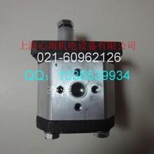 特价DUPLOMATIC迪普马齿轮泵GP1-0041R95F/10VH图片