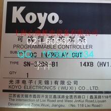 特价光洋KOYO可编程控制器SN-32DR-B1图片