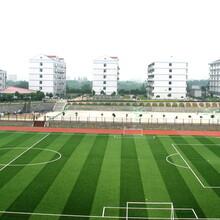 丰台人造草坪门球场规格