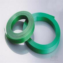 供应pet塑钢带超高强度pet打包带绿色全新料塑钢打包带图片
