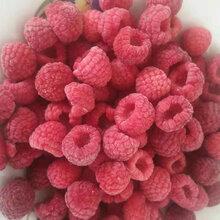 冷库大量出售黑加仑蓝莓软枣猕猴桃树莓灯笼果醋栗冻果图片