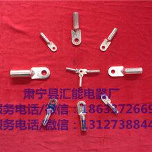 DT-120150DT-185240DT-300400DT-500630DT-800铜接线端子线鼻子