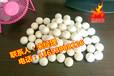 厂家直销弹跳球/振动筛专用清网球/白色实心弹力球