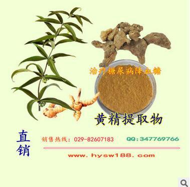 黄精提取物黄精多糖植物提取物