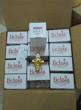 BELGAS减压阀P99调压阀;P99L减压阀,P99H调压器,P99减压阀图片