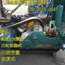 牡丹江多功能高壓活塞泵哪家專業圖片