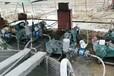 贛州井壁堵漏注漿機